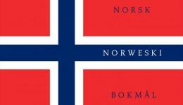 Chcesz mówić po norwesku ? Vil du snakke norsk?