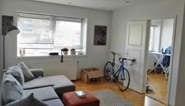 Przytulne mieszkanie do wynajecia w Askim Sentrum