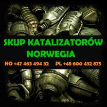 Skup katalizatorów cała Norwegia