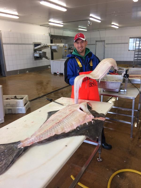 Wieletnie doswiadczenie w przyworstwie rybnym.