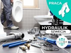Hydraulik / We Can Do It / Szwecja